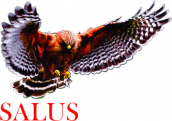 SALUS SAFETY SOLUTIONS
