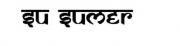 SuSumer Foundation