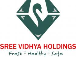Sree Vidhya Holdings