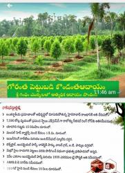 Sri Siddi Vinayaka Property Developers