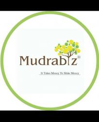 Mudrabiz
