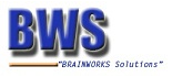 Brainworks Solutions Pvt Ltd