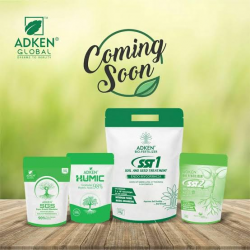 Adken global private limited company