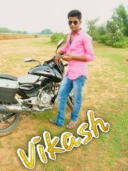 vikash ltd.pvt
